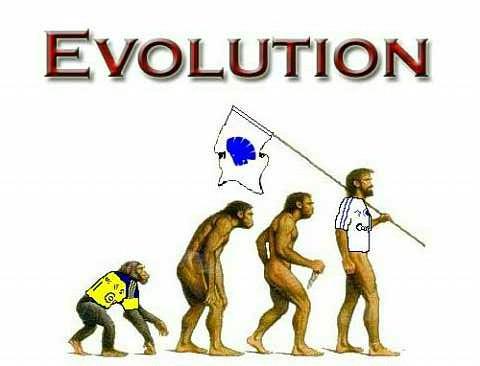 evolution fodbold